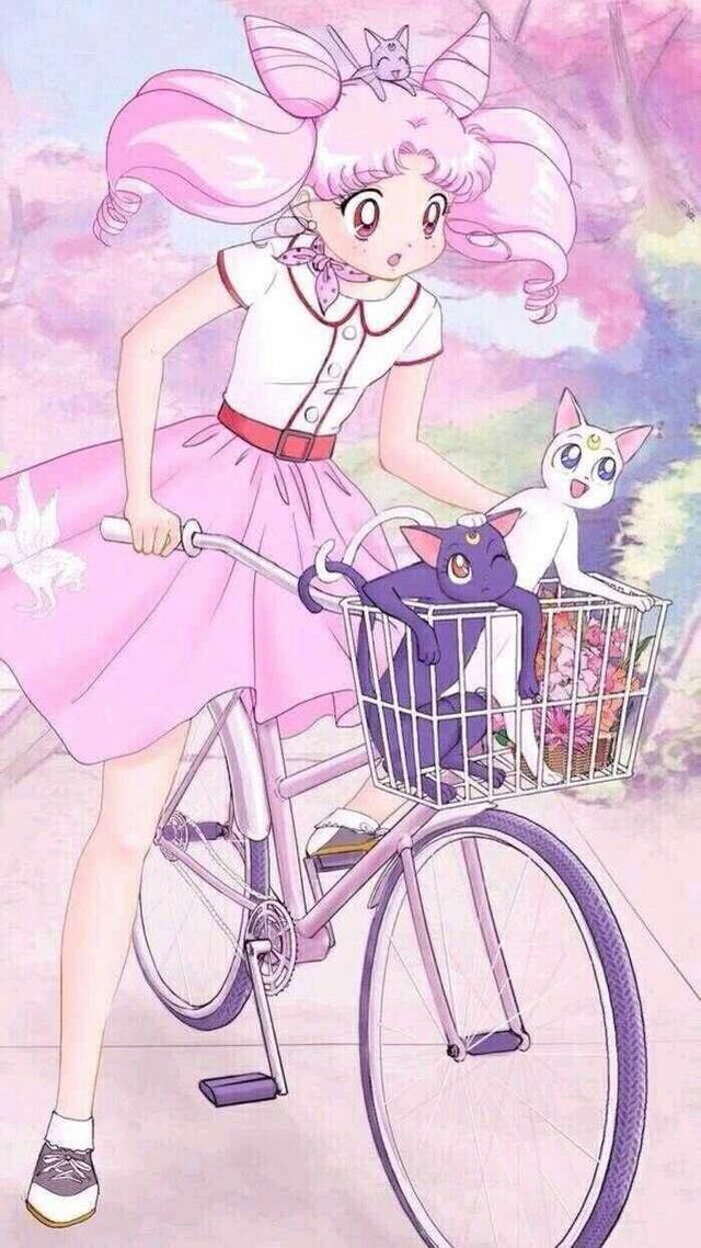 萌宠猫咪的情侣头像