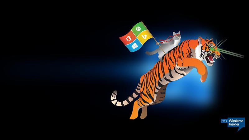 微软上线新网站:涵盖所有微软预览体验计划的照片 - 1