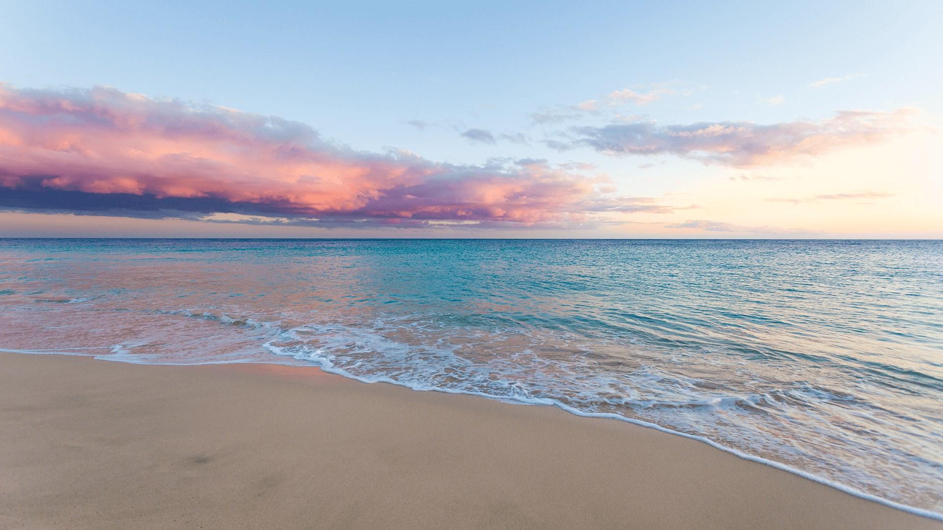 微软发布Win10 Beach Time 4K主题的照片 - 1