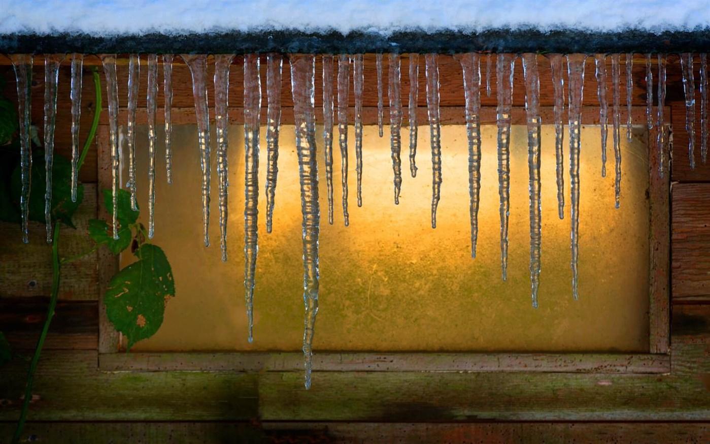 寒冷的早晨:Win10迎来初冬美景免费主题的照片 - 2