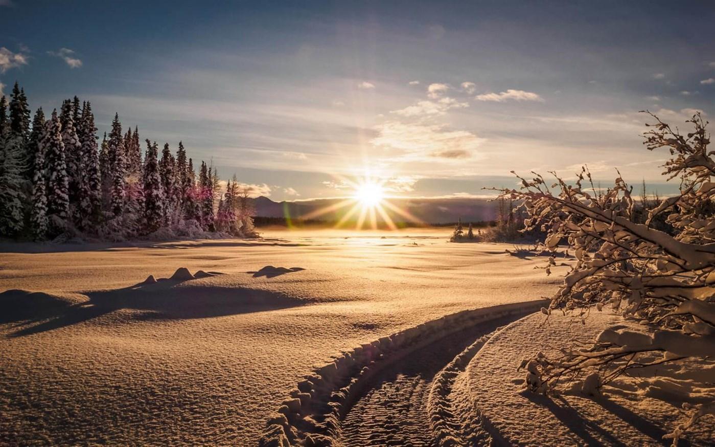 寒冷的早晨:Win10迎来初冬美景免费主题的照片 - 3
