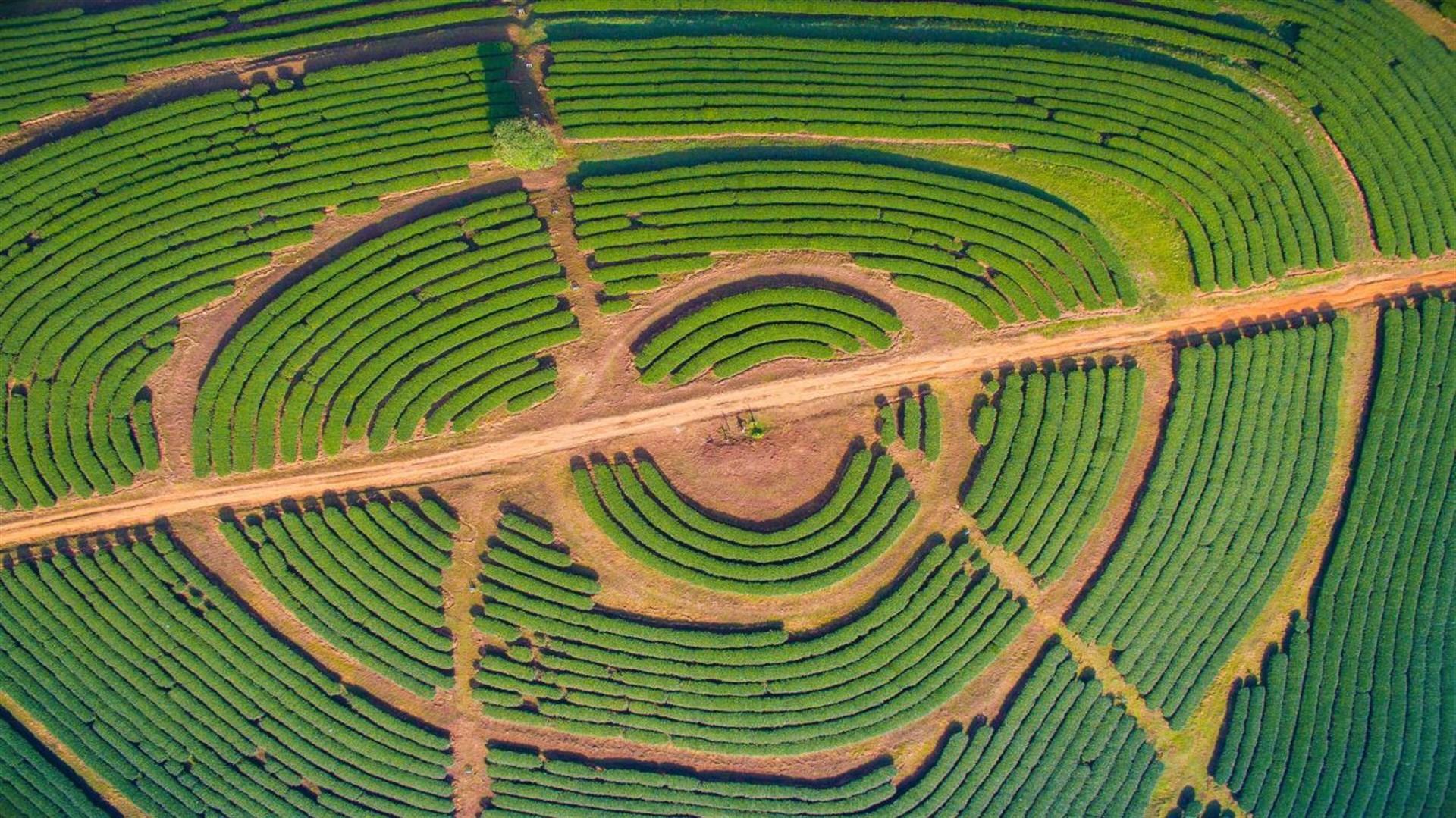 "Win10""Aerial Farmland PREMIUM""4k免费主题发布的照片 - 4"