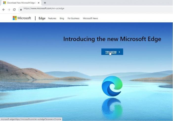 微软阻止Win10平台的其他浏览器下载新版Edge的照片 - 2