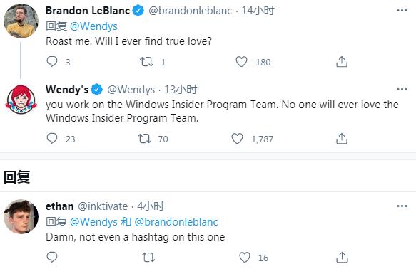 Windows Insider测试团队成员遭Wendy's推特账号无情调侃的照片 - 2