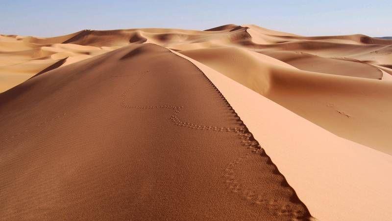 全球面临沙子资源枯竭令CPU晶圆也涨价?不至于的照片 - 1