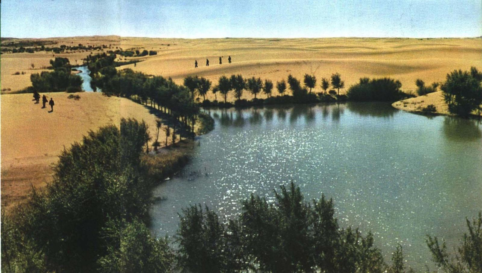 中国首个将要消失的沙漠:毛乌素沙漠即将从地图上彻底抹去的照片