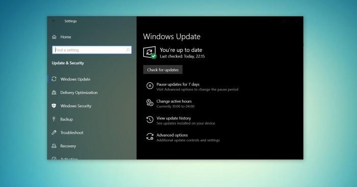 五月更新:微软向预览发布通道推送Win10 21H1的照片 - 2
