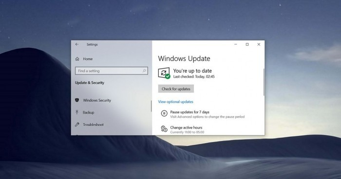 Windows 10 21H1更新的3种方式的照片 - 2