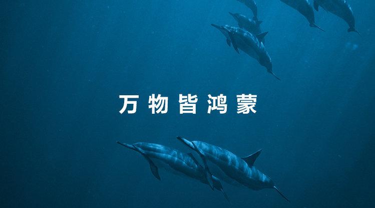 华为鸿蒙首批支持机型名单曝光 升级工作6月2日全面启动的照片 - 2