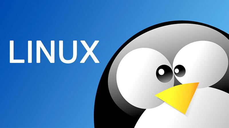 Windows同样无条件保留了前1MB的内存 Linux只是晚了一步的照片