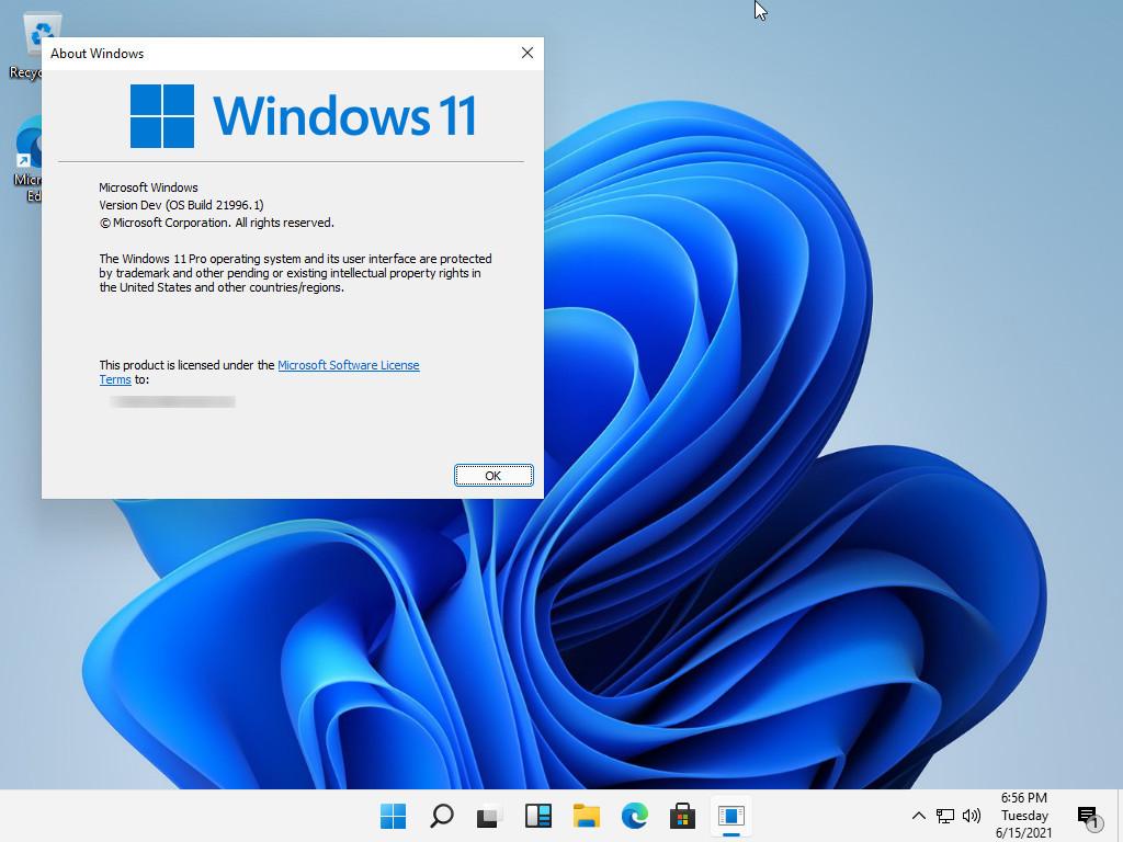 Windows 11最新截图画廊的照片 - 16