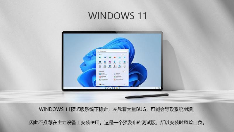 Windows 11下载的照片 - 3