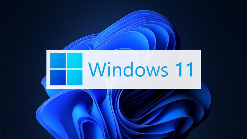 Win11升级体检工具:开源的Win11SysCheck发布的照片 - 1