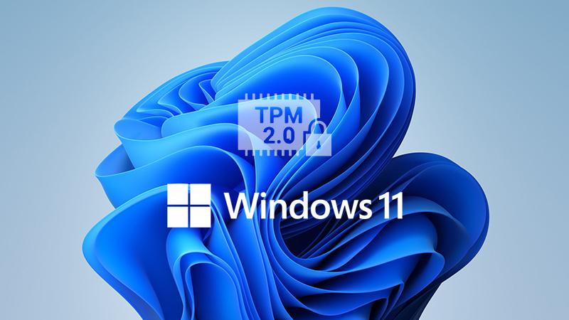 15年前的奔腾4通过Windows 11升级检测