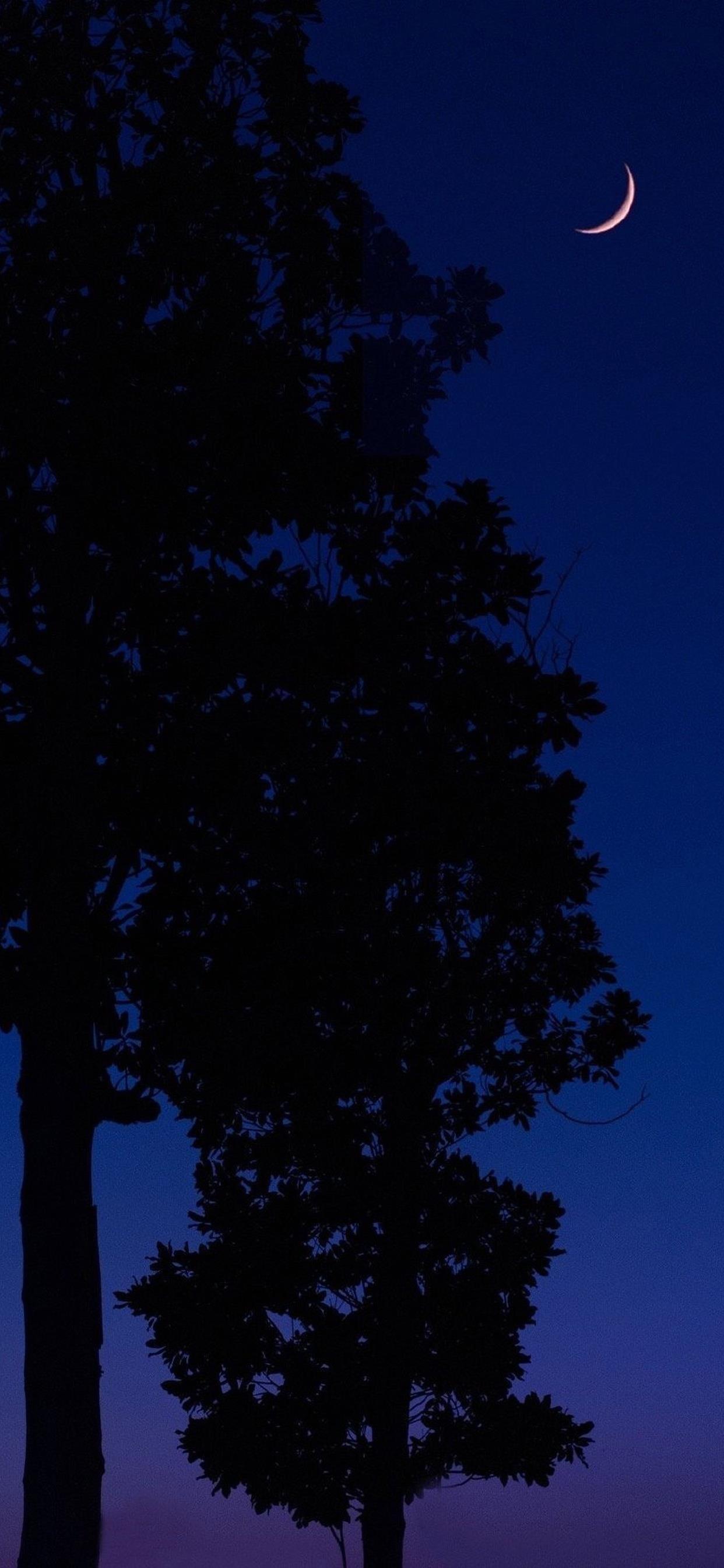 自然夜色风景图片手机壁纸 让人陶醉的夜景! 