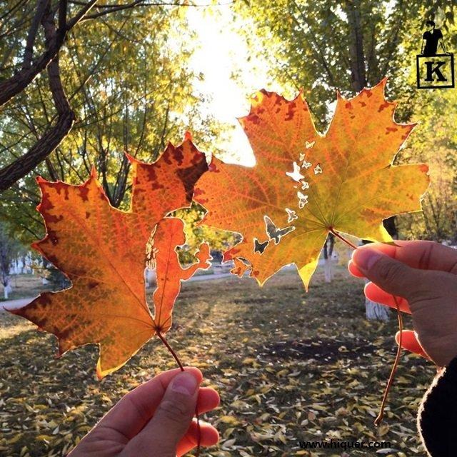 《超精美落叶艺术》艺术家Kanat Nurtazin栩栩如生的作品赋予树叶第二次生命! 趣事儿 第7张
