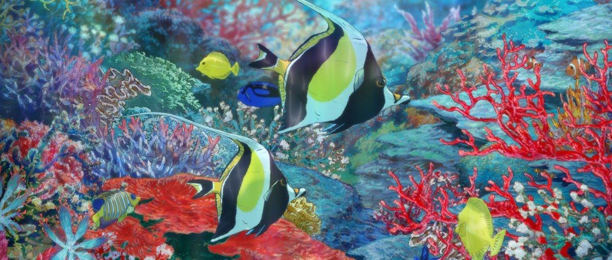 《海兽之子》:绝美到令人屏息的海洋世界 涨姿势 第4张