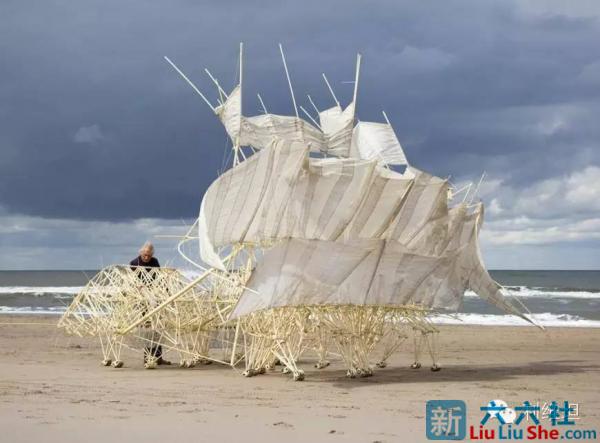 """""""海滩仿生兽""""-未来它们将会是这个星球的主人 liuliushe.net六六社 第1张"""