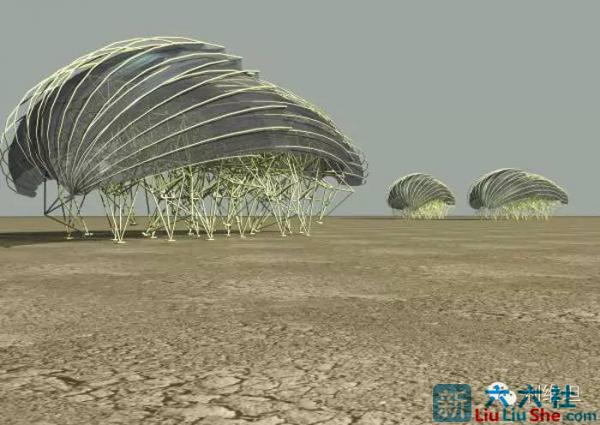 """""""海滩仿生兽""""-未来它们将会是这个星球的主人 liuliushe.net六六社 第7张"""