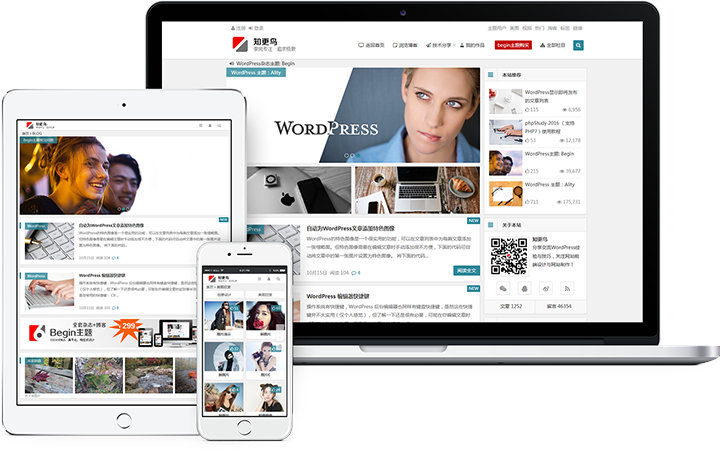 WordPress主题:知更鸟主题begin lts、begin 5.2及其它各个版本