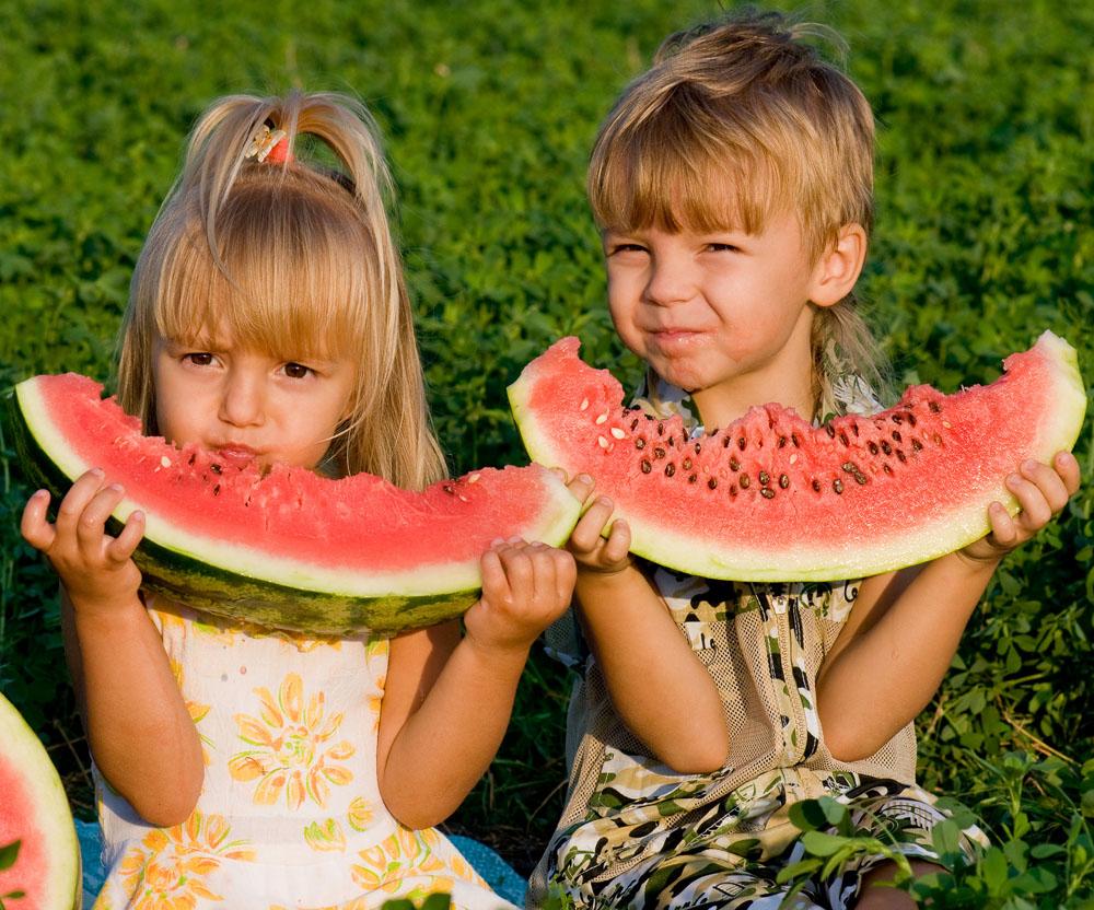 夏日必备的懒人切西瓜神器 提升吃货格调的小工具 涨姿势 热图2