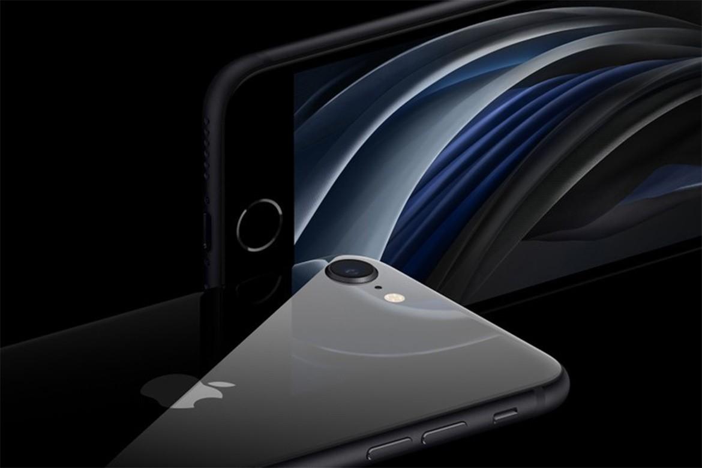 苹果可能会降低iPhone SE和iPhone XR的价格