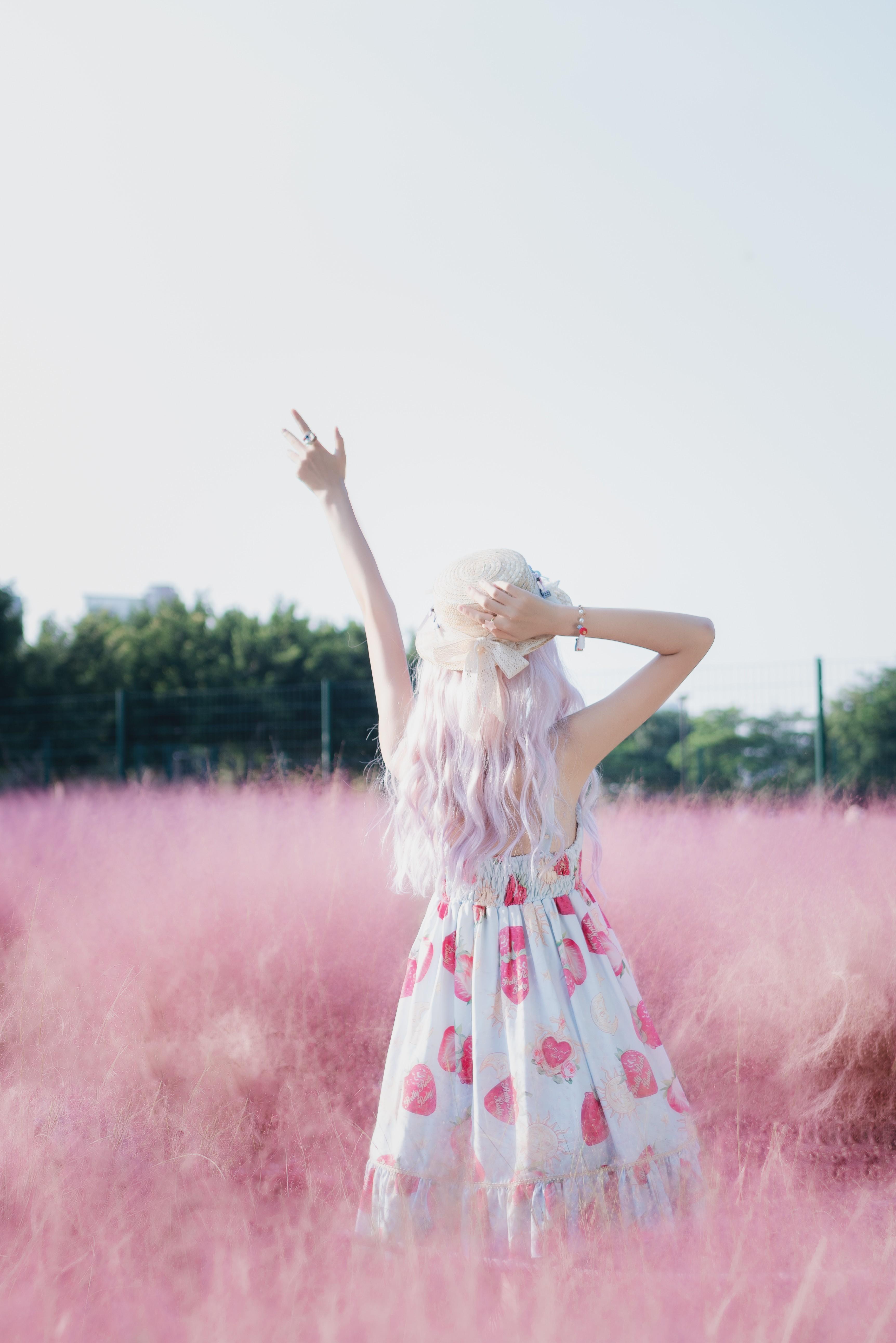 西瓜粉草写真,阳光下的粉色梦幻