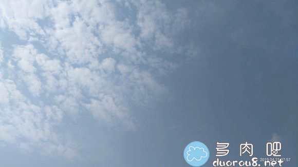 阳光是最好的特效!蓝天白云映衬下的多肉们图片 No.105