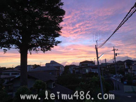 记录我的日本大学之旅 - [leimu486.com] No.30