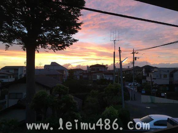 记录我的日本大学之旅 - [leimu486.com] No.31