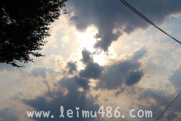 记录我的日本大学之旅 - [leimu486.com] No.87