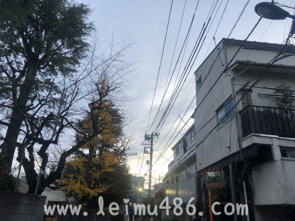 记录我的日本大学之旅 - [leimu486.com] No.186