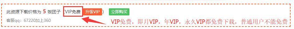 VIP及权限说明_图片 4