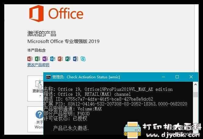 [Windows]微软Office 专业增强版 2019 批量许可企业版图片 No.3