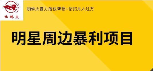 【实地项目+网络】蜘蛛火暴力撸钱36招 视频教程,招招月入过万 配图