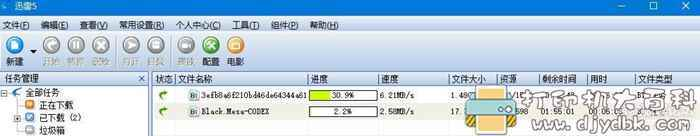 [Windows]不受限万能迅雷版本!自动手打造的迅雷图片 No.5