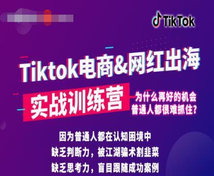 小白也可操作的海外短视频项目,抖音国际版TikTok实战培训课【视频教程】 配图