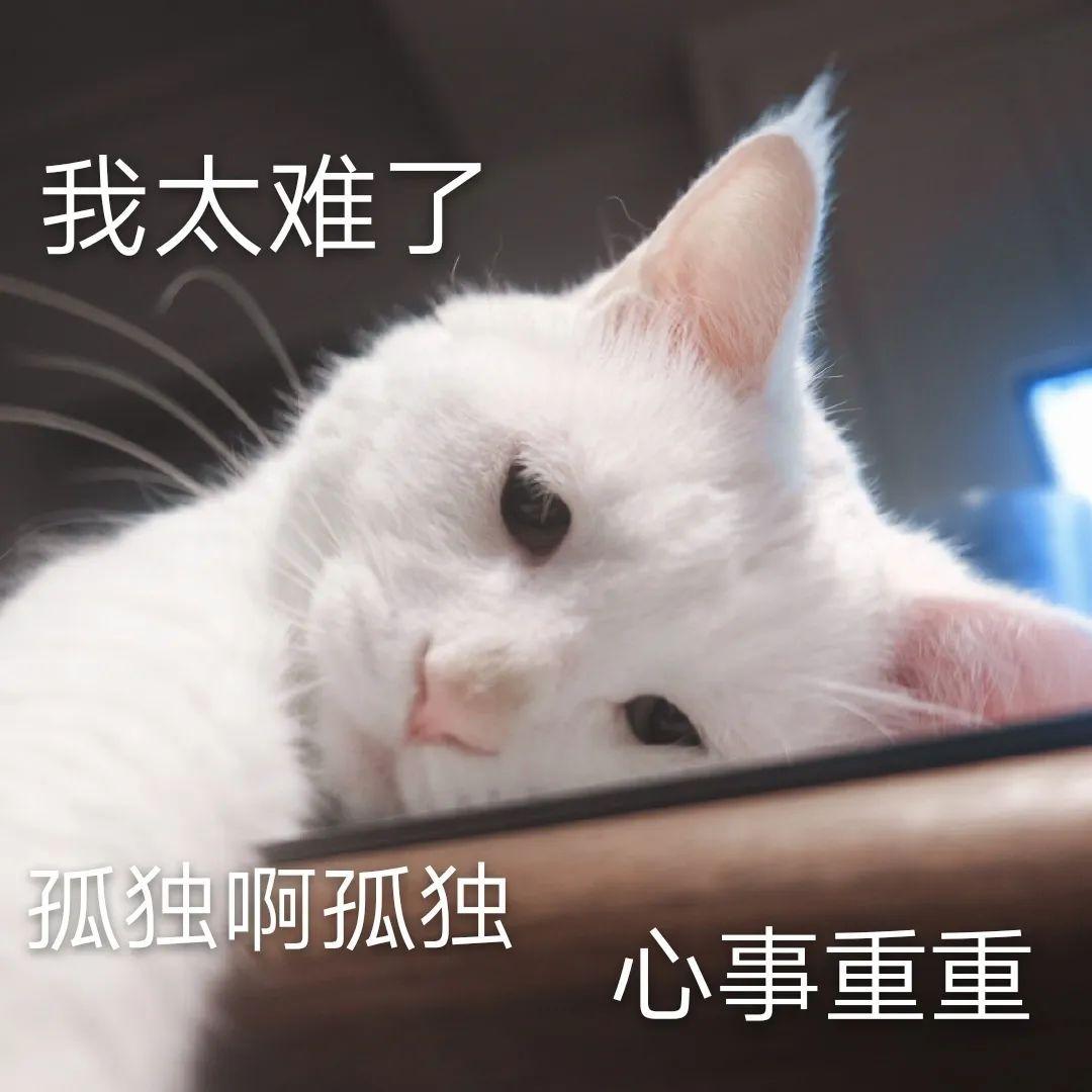 """今年看番恼火了!日本""""雅虎新闻""""称,因疫情原因今年夏秋季番恐延期_图片 No.2"""