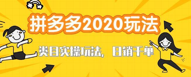 2020拼多多直通车打造新类目爆款玩法,轻松日销千单实战培训【视频教程】 配图