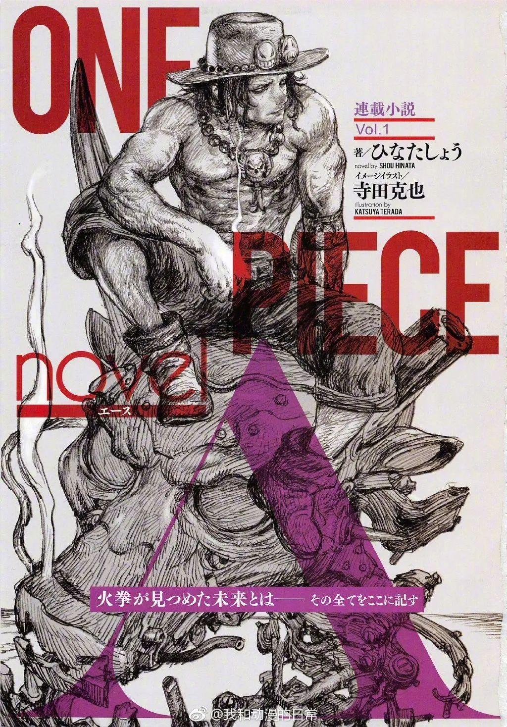 《海贼王》艾斯小说漫画化决定,将于夏季开始连载!_图片 No.2