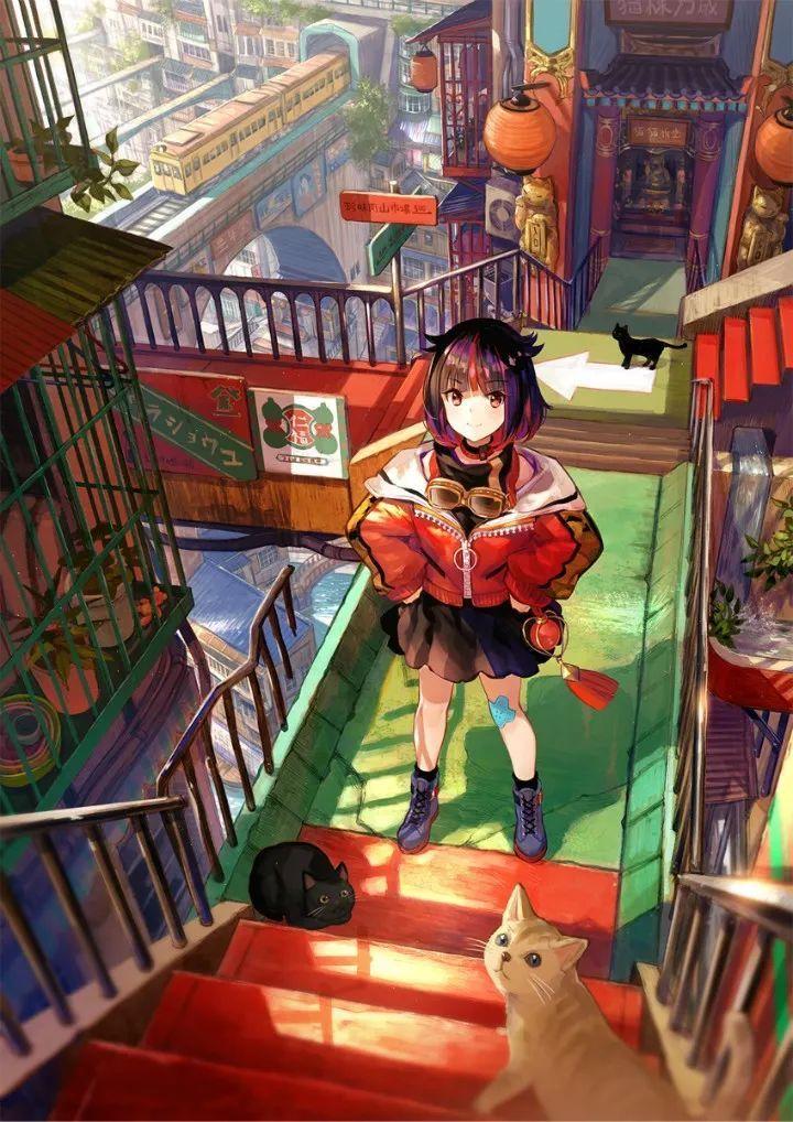 P站美图推荐——猫与少女特辑(二)_图片 No.10