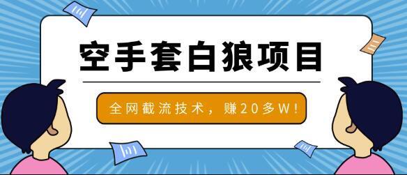 2020最新全网截流技术,月赚20W的空手套白狼项目【视频教程】 配图