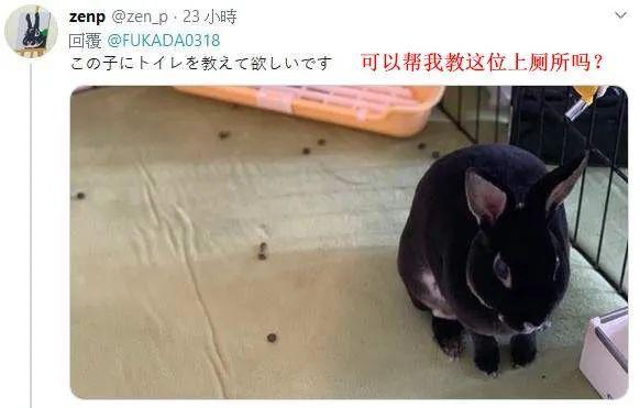 """深田咏美推特粉丝破百万,发美照问大家""""你想要什么?""""_图片 No.10"""