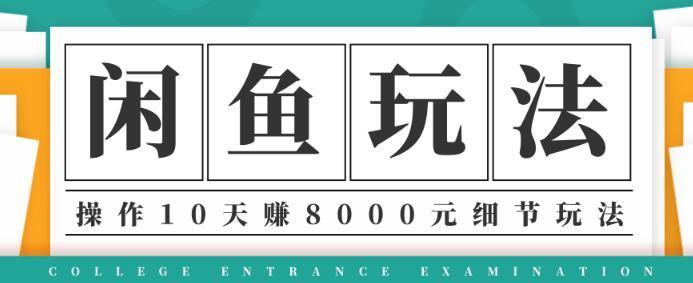 宅男闲鱼项目玩法实战班第12期,操作10天利润8000元细节玩法 配图