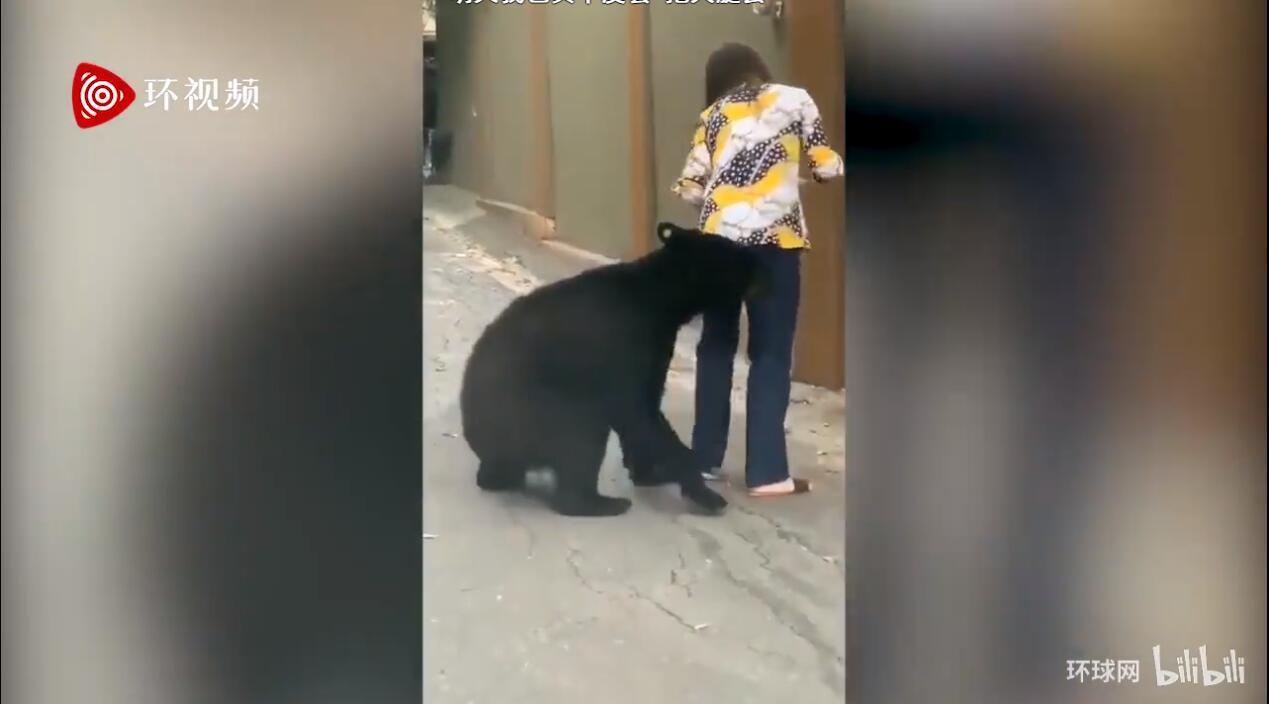黑熊抱女子大腿 No.1