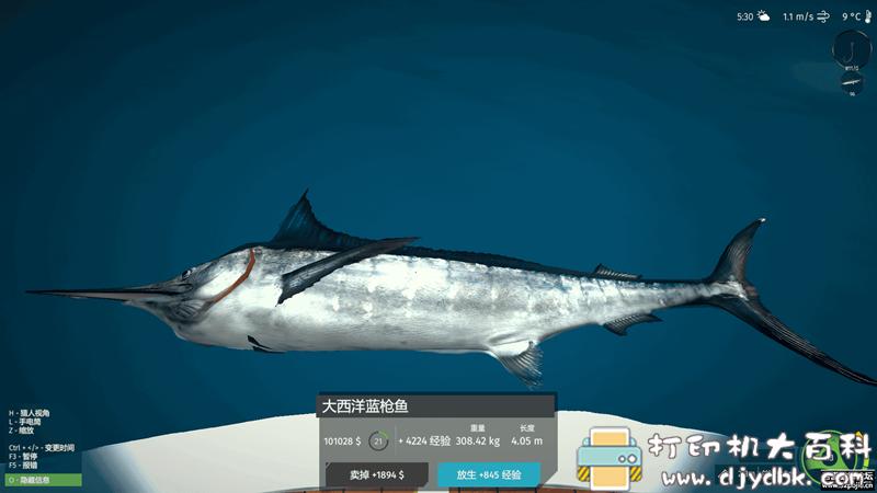 PC游戏分享:终极钓鱼模拟器:新鱼种 免安装绿色中文版 解压即玩 配图 No.5