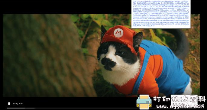[Android]视频下载神器、支持1200+视频平台,包括(p站、油管4k)获取最佳画质 配图 No.3