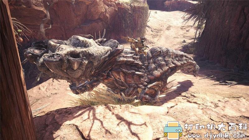 PC游戏分享:《怪物猎人:世界》最新学习版,集成冰原DLC图片 No.3