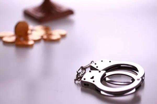 继D站之后,又一家二次元发家的app完蛋!第一弹APP相关负责人被捕,涉嫌侵犯著作权罪!_图片 No.11