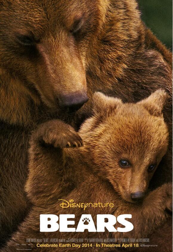 【英语中英字幕】动物世界纪录片:阿拉斯加棕熊 Bears(又名:熊世界 )(2014)全1集 超清1080P图片 No.1